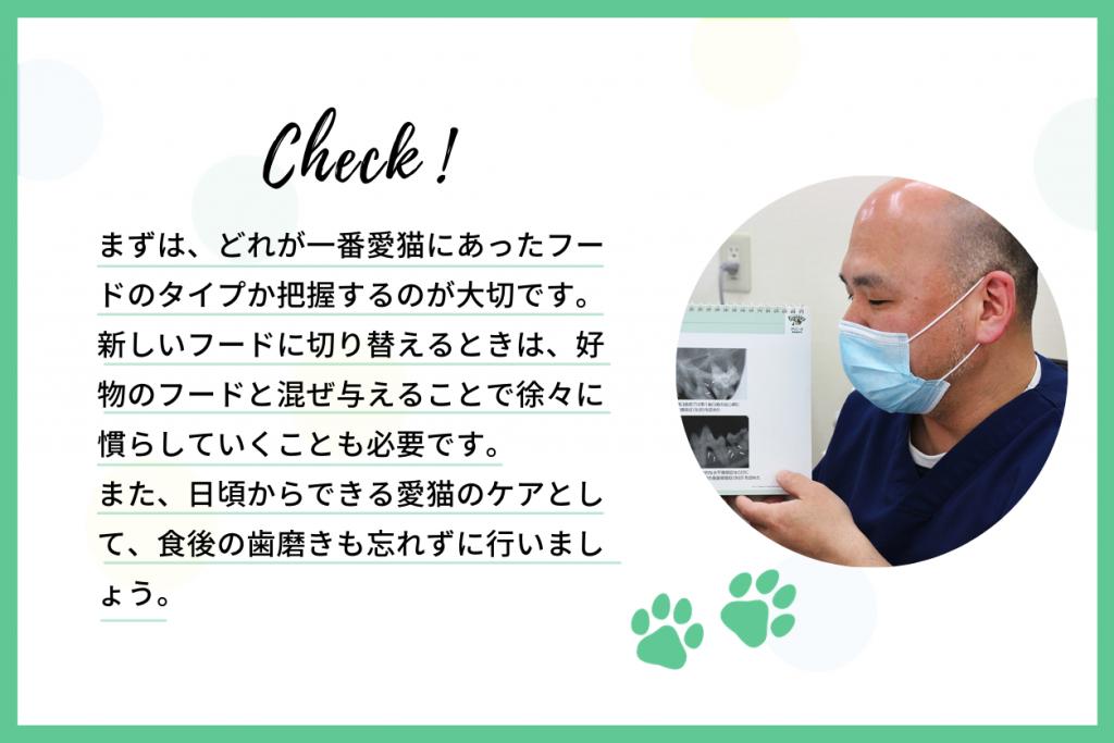 愛猫の健康維持のためにやれること