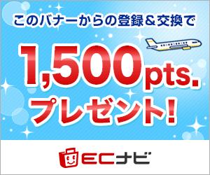 陸マイラー始めるならECナビ 1,000ポイントプレゼント!